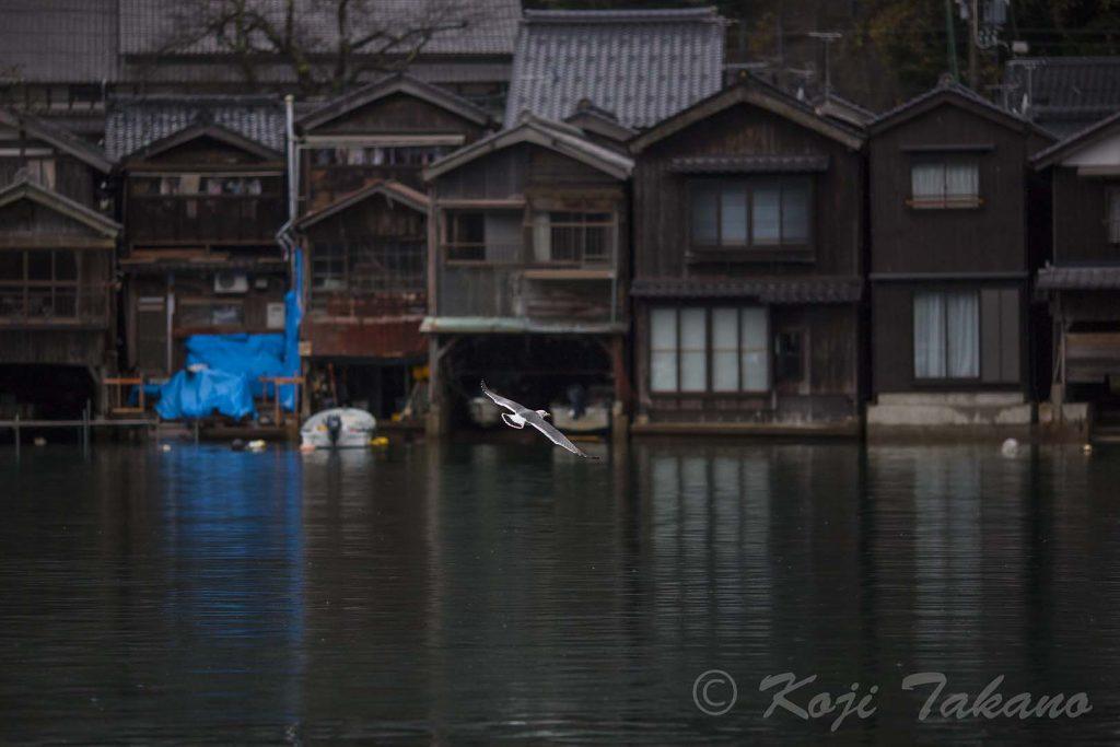 京都 伊根